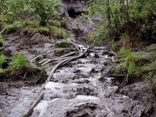 Erosion, Sedimentation, and Woolly Mammoths