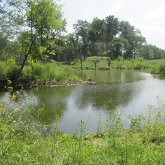 Euclid Creek Watershed Projects